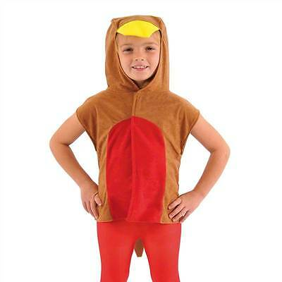 Robin Red Breast Bird Costume For Kids One Size, Fancy Dress, Charlie Crow