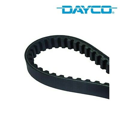 Courroie De Distribution Dayco 941031 Ducati 996 R