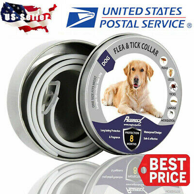 Dewel Flea and Tick Collar Adjustable for Small Medium Large Dog Pet Over 18lbs