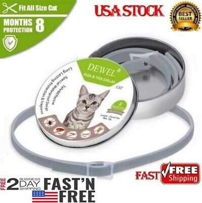 DEWEL Flea and Tick Collar for cat 8 Month Protection Anti Insect Mosquitoes US