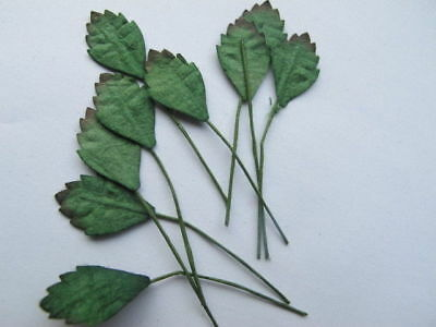 10 Small GREEN General LEAVES Wire Stem Mulberry Paper Craft  G1G