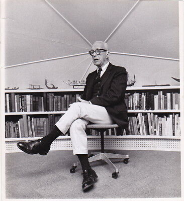 BUCKMINSTER FULLER in HIS GEODESIC HOME by PALMER* Rare VINTAGE 1971 press photo