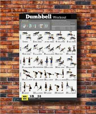 Hot Fabric Poster Dumbbell Workout Exercise Body Strength 36x24 40x27inch Z775