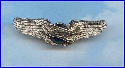 Staggerwing Beechcraft Antique Aircraft Airplane Plane Wings 99's Aviator Pin