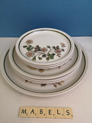 MARKS & SPENCER ~AUTUMN LEAVES~ assorted plates x 7