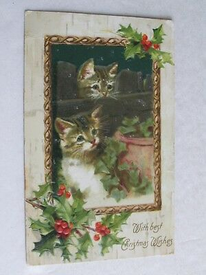 F586 Postcard Kittens Cats Christmas Wishes holly 1907