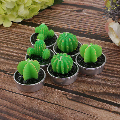 6Pcs Cactus Tealight Candles Handmade Delicate Succulent Cactus Candles Gift