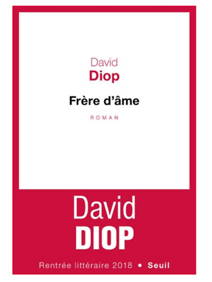Frere D'ame Livre David Diop Seuil Rentree Litteraire 2018 Book Lecture Neuf New