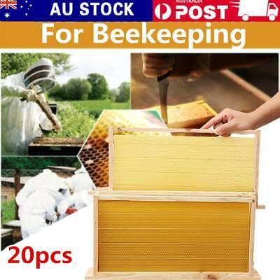 20x ASSEMBLED Frames Bee hive + 20x Bees Wax Foundation Sheets