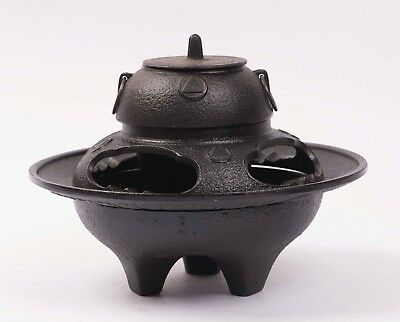 Japanese Nanbu Tekki Rare Style Chagama Cast Iron Tea Kettle from Japan Beauty