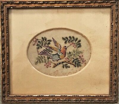 Small Antique Victorian Gilt Framed Pettit Point Embroidery Bird Picture #a
