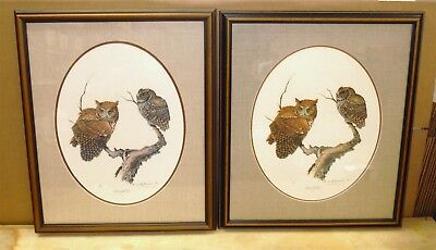 PAIR of James R Darnell Signed Prints Screech Owl III 213 & 216/1000 *FREE SHIP