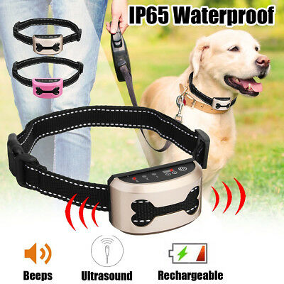 Collier Anti Aboiement Ultrasons Ou Choc Education Canine Rechargeable Usb