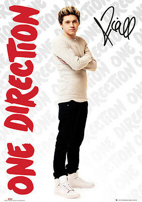 Official One Direction Niall Maxi Poster 91.5 x 61cm Mini Giant Wall Art Band