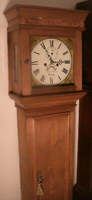"Antique  Pine  Devon "" Totnes  ""  8 Day Grandfather / Longcase Clock"