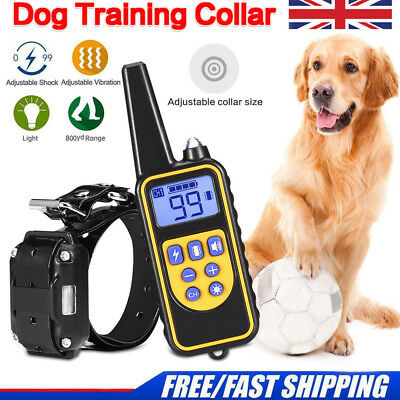 800M Pet Dog Waterproof Training Collar Rechargeable Electric Shock LCD Display