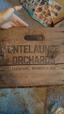 Fruit Ontelaunee Orchard Wood Box crate Leesport PA Berks county 18x14.5x12in