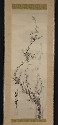 """JAPANESE HANGING SCROLL ART Painting """"Plum blossoms"""" Asian antique  #E5139"""