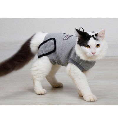 Cat Sterilization Care Wipe Prevent Lick After Surgery Wear Recovery Suit