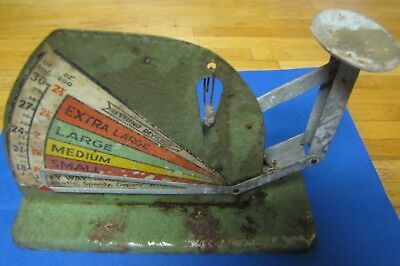 Vintage Green Jiffy Way Chicken Egg Grading Scale