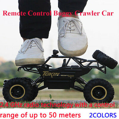 1/16 Scale 4WD Drive Rock Crawler Off-road Carros Remote Control RC Car 2.4GHz R