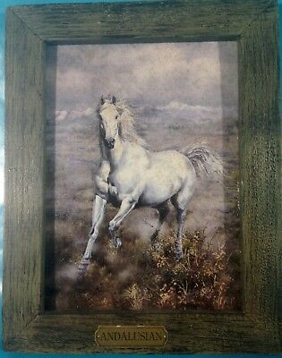 """Running Andalusian Horse Picture Print 7"""" x 9"""" Barn Wood Style Frame w/Nameplate"""