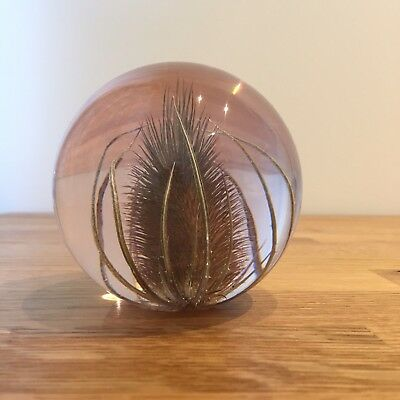 TEASEL PAPERWEIGHT Made With Real Teasel - Collectable Country Gift Art