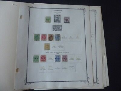 Transvaal 1885-1910 Stamp Collection on Scott Specialty Album Pages