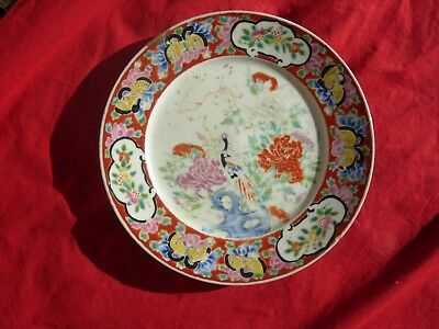 Antique 19th Century Chinese China   Asia  Asian Plate SIGNED PEACOCK Butterfly