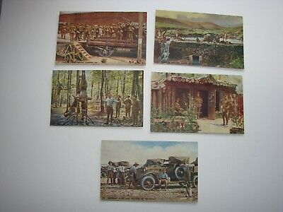 """British / Canadian WW1 Military Post Cards, 5 x """"Tit-Bits"""" War Pictures"""