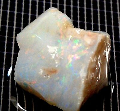 Opal Rough Natural  Australian  7 Cts Coober Pedy  © Gtopals ®  # Nw8