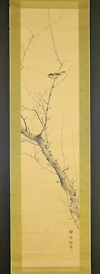 """JAPANESE HANGING SCROLL ART Painting """"Bird on tree"""" Asian antique  #E5233"""