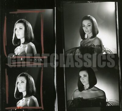 Beverly Adams Ambushers 1967 Beautiful Contact Sheet Photograph Peter Basch