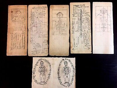 x6 Antique Buddhist Medicine / Anatomy Woodblock Prints / Manuscript