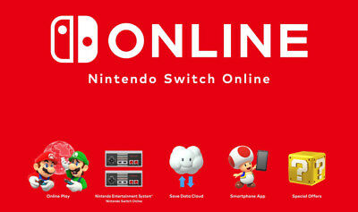 Nintendo Switch Online 1 Year Plan Subscription