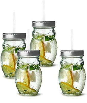 Circleware 69049 Owl Mason Jars Drinking Glasses with Metal Lids and Hard Pla...