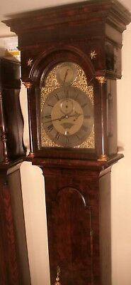 "Antique Dark  Walnut  "" Norwich  ""  Longcase / Grandfather Clock"