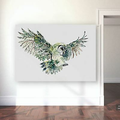 OWL ART beautiful & colorful animals high quality Canvas painting  Home decor
