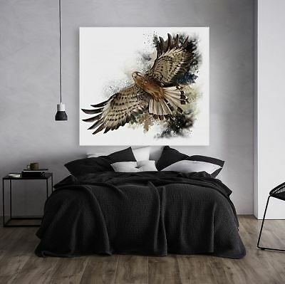EAGLE beautiful & colorful animals high quality Canvas painting  Home decor