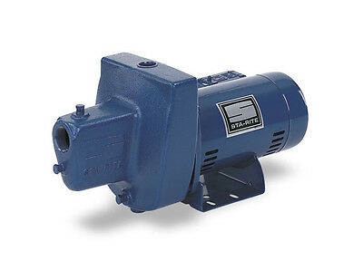SNE-L 1 HP Sta-Rite Shallow Well Water Pump