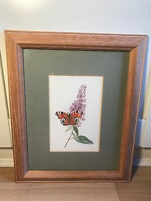 Lovely Signed Watercolour Painting Of Butterfly In Buddleia On Wood Frame