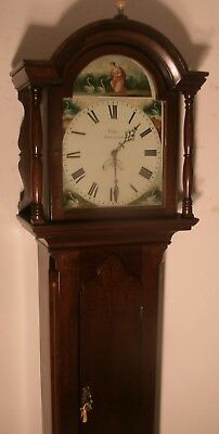 "Antique Mahogany  Case  "" Totnes ""  Swan Dial Longcase / Grandfather  Clock"