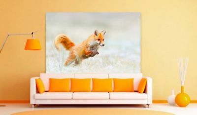 FOX beautiful & colorful animals high quality Canvas painting  Home decor