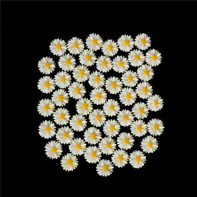50pcs white daisy flower resin flatback cabochon DIY jewelry decoration TEUS