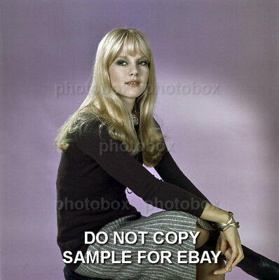 * Sylvie Vartan - Exclusive  Unpublished PHOTO  4149 *