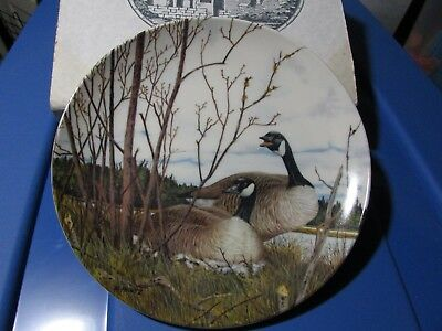 Canada Goose Nesting Donald Pentz Art 1986 Dominion Collector Plate #2