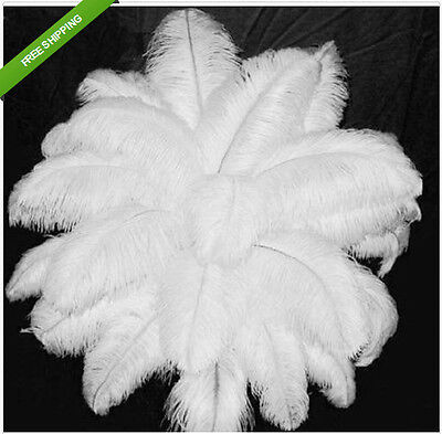 New wholesale 100pcs 8-10inch/20-25cm white ostrich feathers decor wedding