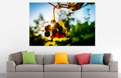 FOOD DRINK FOOD LOVELY  ART WALL ARTS high quality Canvas home decor