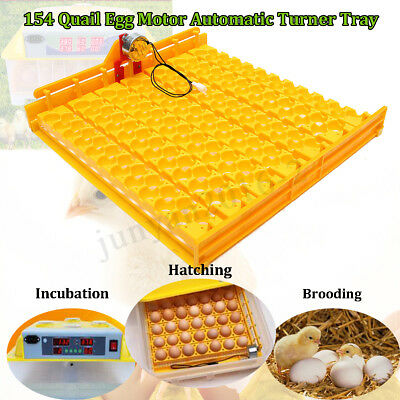 110V Automatic Incubator 154 Quail Eggs Tray Turner Chicken Hatch Poultry Bird