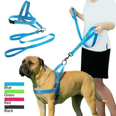 No Pull Reflective Dog Harness Set -Harness & Lead for Small Medium & Large Dogs